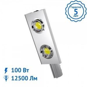 Уличный светильник ALFA-100 Вт светодиодный