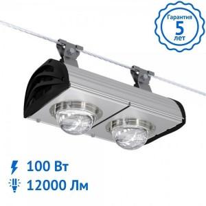 Уличный светильник ALFA NEW-100 Вт Tros светодиодный