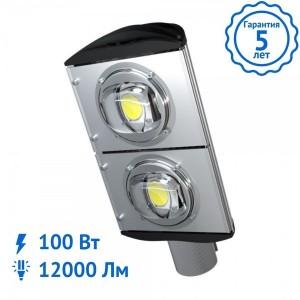 Уличный светильник BETA-100 Вт светодиодный