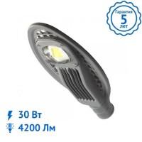 Уличный светильник KOBRA-30 Вт Mini светодиодный