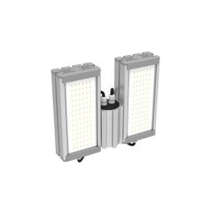 Уличный светодиодный светильник OPTIMA-32х2